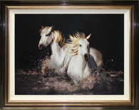 CC653LA Camargue Horses 126 x 100 cm (T1) ws155