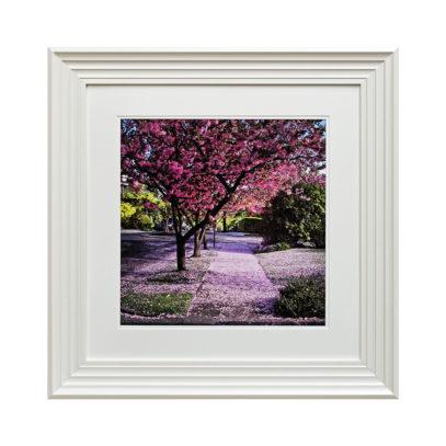 CC257 Blossom Tree II