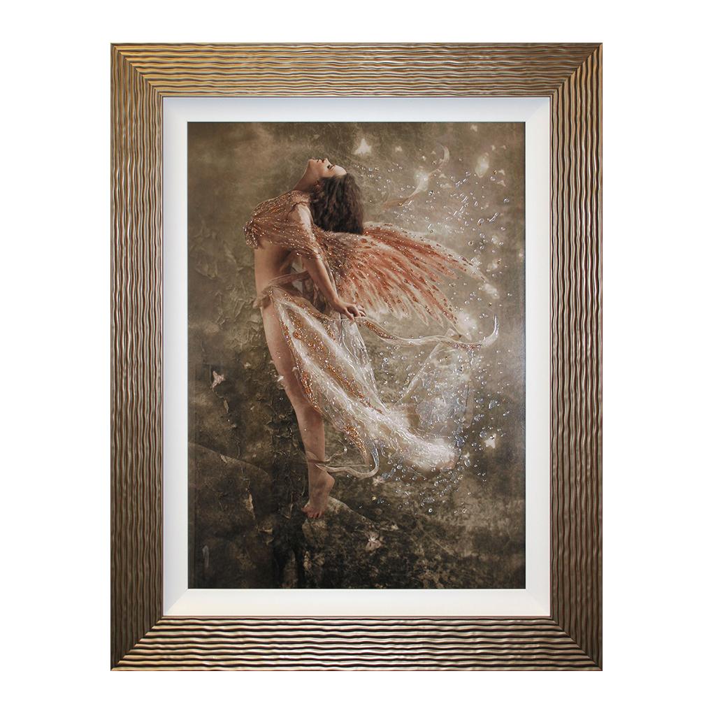 CC506LA Butterfly Wings