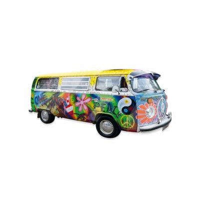 CVS19002-612 Peace Van